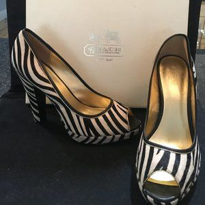 Coach Zebra Haircalf Open-Toed Pumps